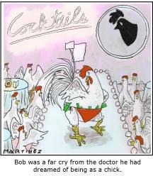 chickfinal